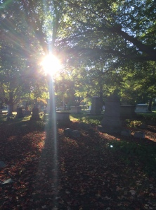 CarolynOliver_MountAuburnCemetery_October2014