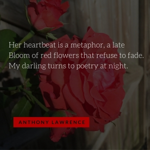 Anthony Lawrence_My Darling Turns to Poetry at Night